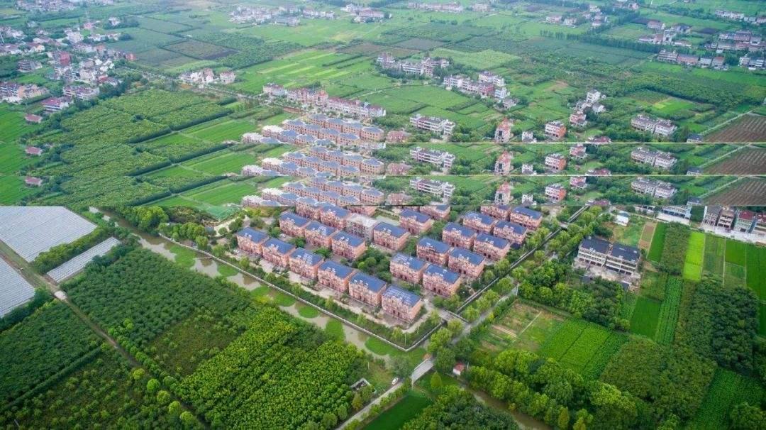 乡村振兴政策将出台,现代化农业建设再起风口