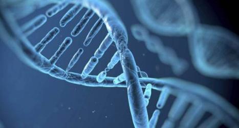 震惊!基因编辑儿童是进步还是后退