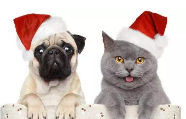 """财经365圣诞特辑:今天不是中国""""圣诞节""""!"""