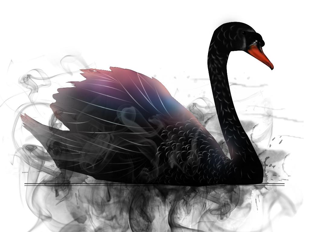惊悚的2018年结束了 2019年有哪些黑天鹅?