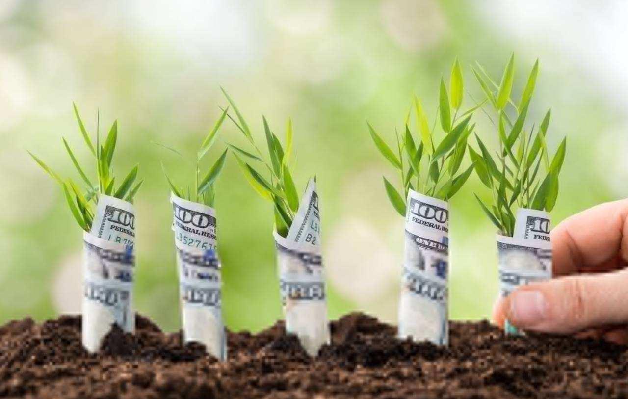 支付宝账单重磅来袭:学会理财是关键!
