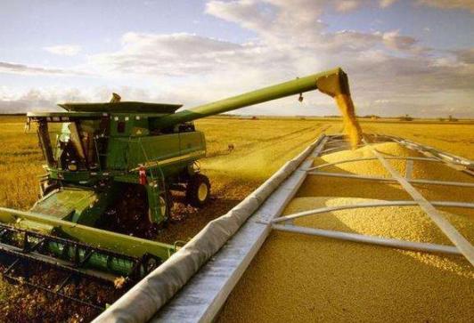 股票-农业板块等风来 机会在这里!