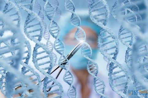 """基因改编婴儿10大真相!全球最""""疯狂""""!"""